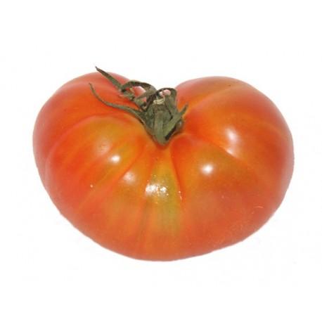 Tomate Marmande » al peso
