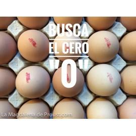 Huevos 1 docena » 12 unidades