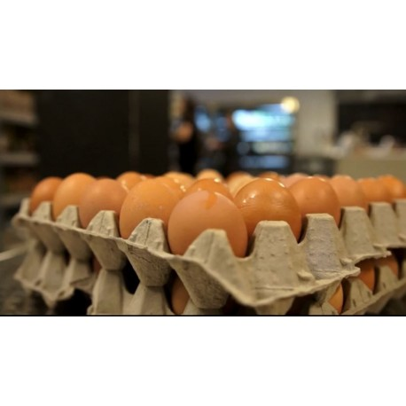 Huevos 1/2 docena » 6 unidades