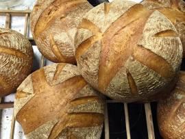 fondo pan ecologico